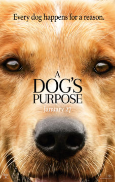 {Giveaway} #ADogsPurpose Movie Trailer!