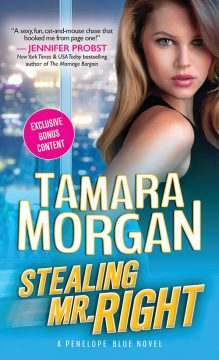 {Excerpt+$150 BaubleBar💎Giveaway} Stealing Mr. Right by @Tamara_Morgan