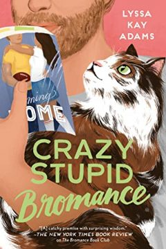 {ARC Review} Crazy Stupid Bromance by Lyssa Kay Adams