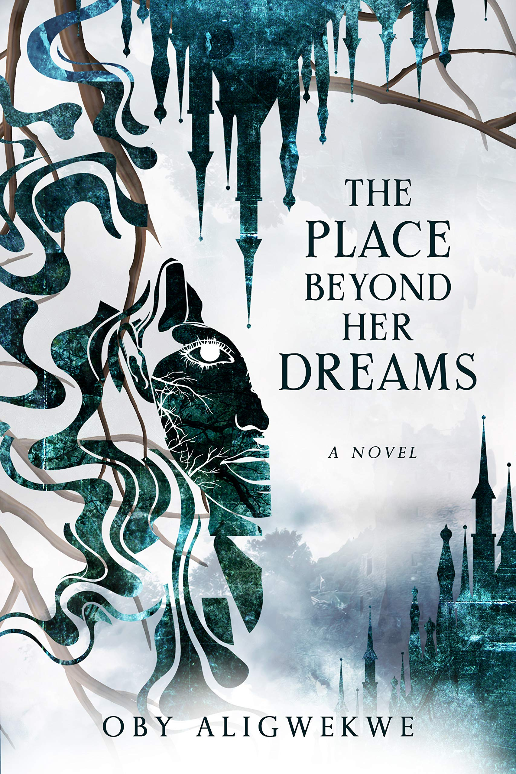 The Place Beyond Her Dreams by Oby Aligwekwe